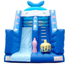 Castle, Inflatable Combo, Jumping Castle (GET-201304)