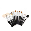 12PCS Professional Women Sexy Makeup Brush Set Kit ESG10500