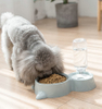 Double Pet Feeder Bowls with Automatic Waterer Bottle ESG12365